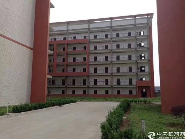 湖北荆州市红本厂房出售
