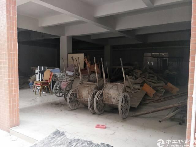 大朗镇新马连村新建厂房招租