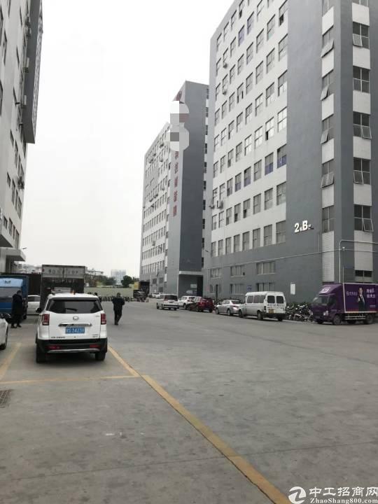 公明高速出口新出楼上1100平米带装修办公室厂房出租-图4