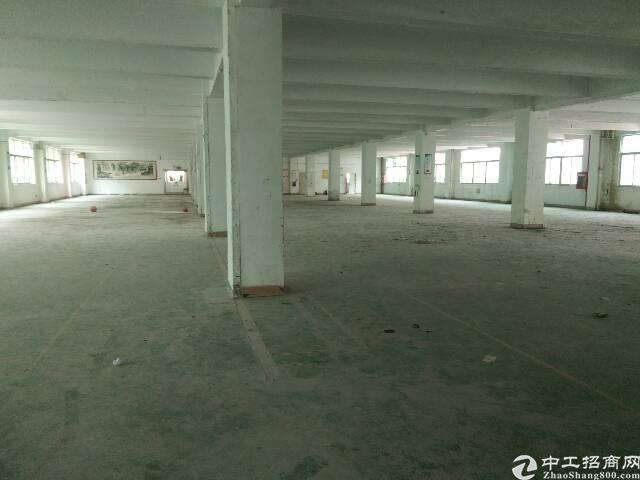 福永新出原房东1-4层8000平米厂房招租(可大小分租)-图2