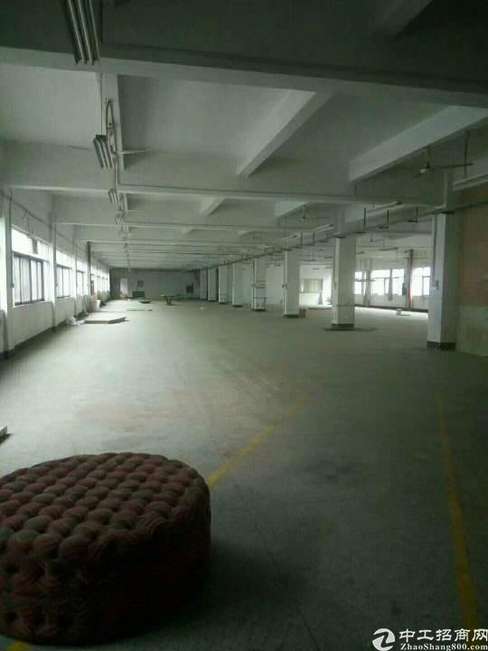 公明高速出口新出楼上1100平米带装修办公室厂房出租-图3