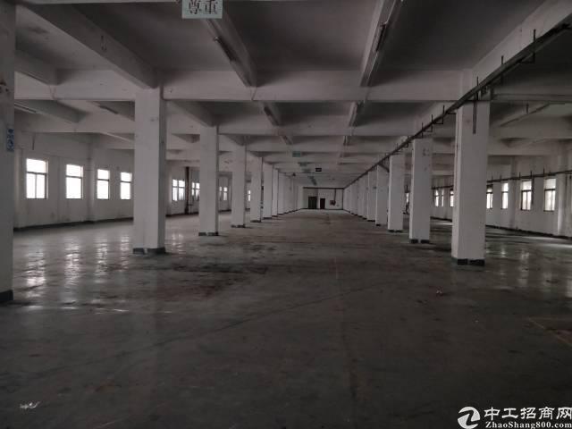 公明靠近石岩新出一楼3000平米有红本原房东厂房-图2