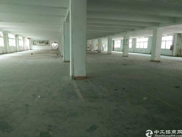 福永新出原房东1-4层8000平米厂房招租(可大小分租)