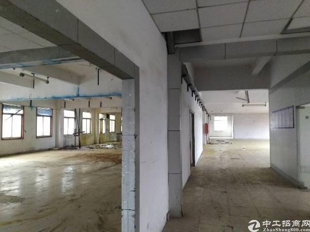 沙井衙边新出独门独院4200平方厂房