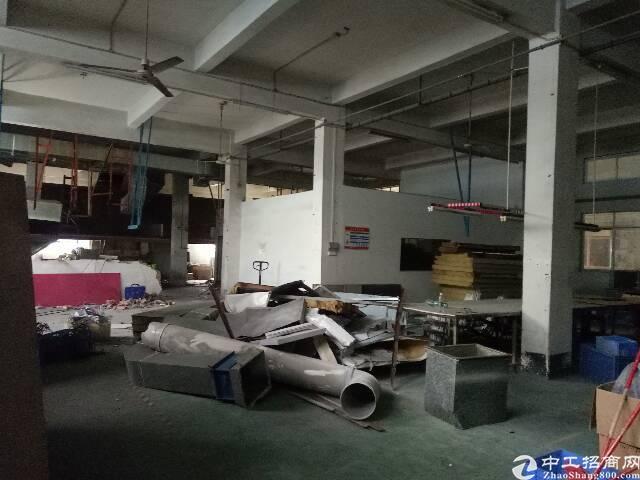 谢岗镇新出一楼标准厂房700平
