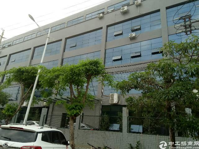 自建钢构实际1350平,园区形象好,优惠招租在东莞塘厦,可分