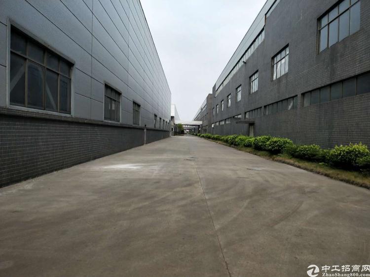 新塘镇开发区超靓独院厂房