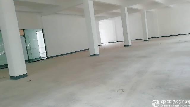 福永凤凰精装写字楼特价出租,面积300平大小可选