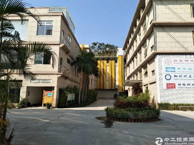 观澜大道福民电子城附近精装修写字楼出租