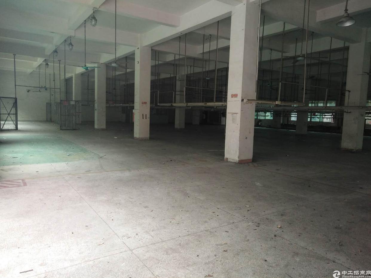 广州市增城区新塘镇工业区厂房出租