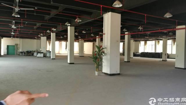 龙华边上一楼1500平方 使用率高,层高6米