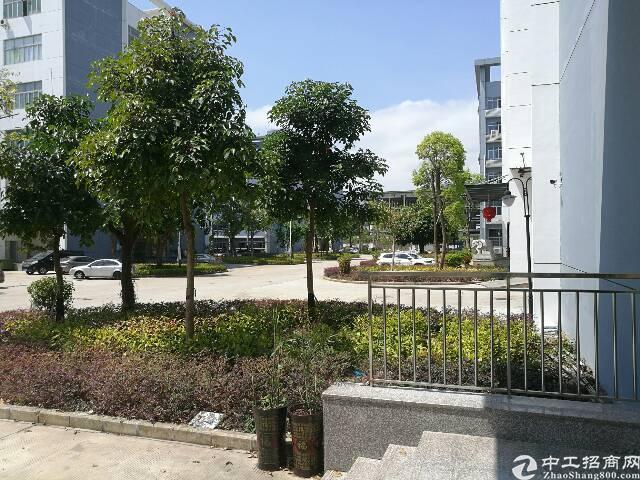 标准红本一楼1800平6米高可申请补贴 坪山 大工业区