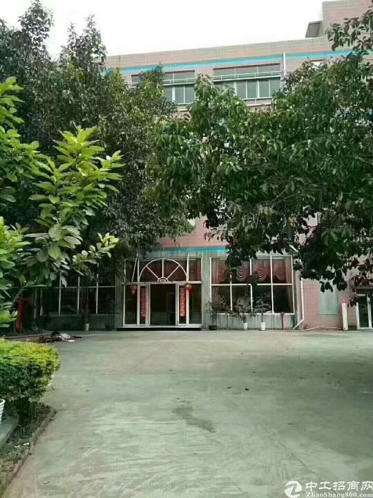 观澜福民龙观快速边上新出独门独院带红本7000平米厂房出租