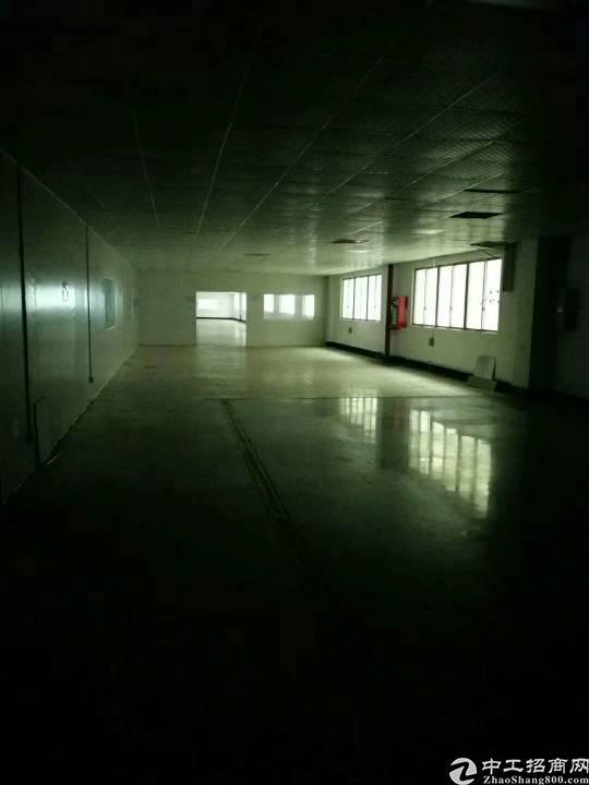 福永重庆路边上,3200平方带精装修厂房-图2