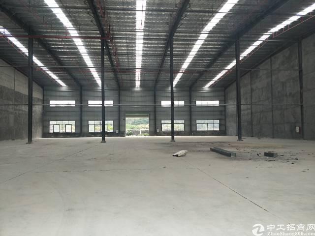 新塘镇全新钢结构滴水9米  可分租