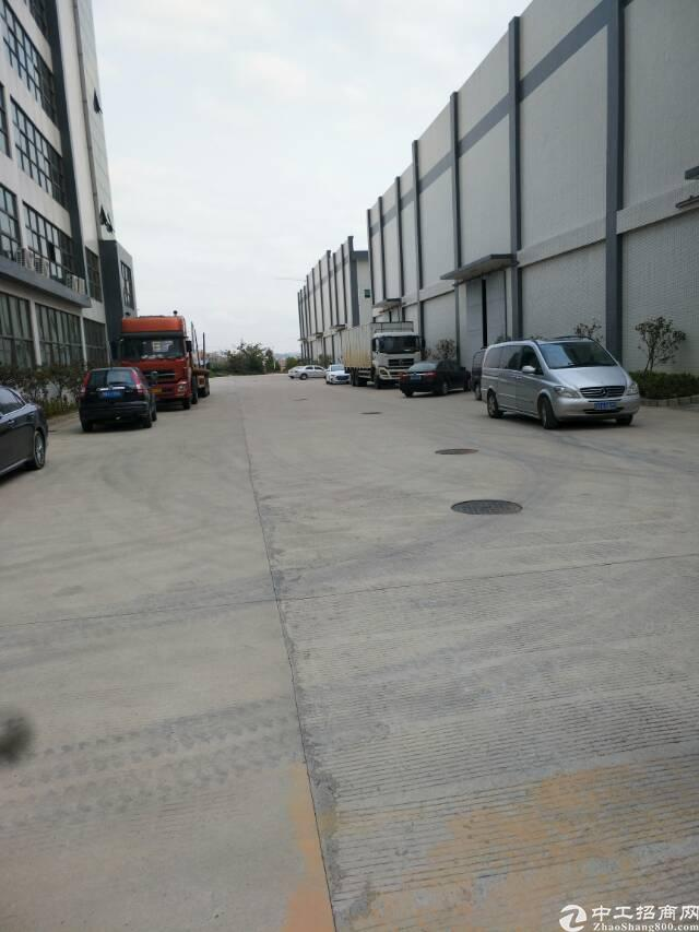 横岗新出12米高钢构厂房6250平方出租