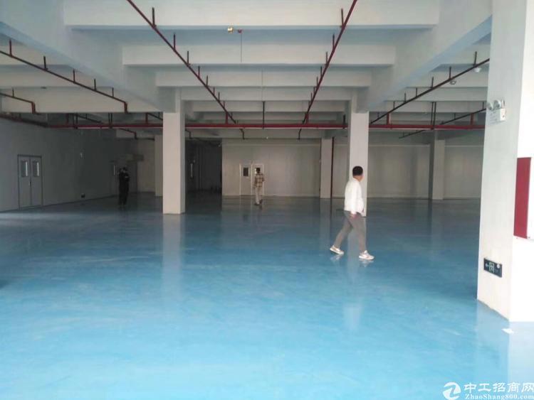 龙华纯地铁口厂房招租大小分割