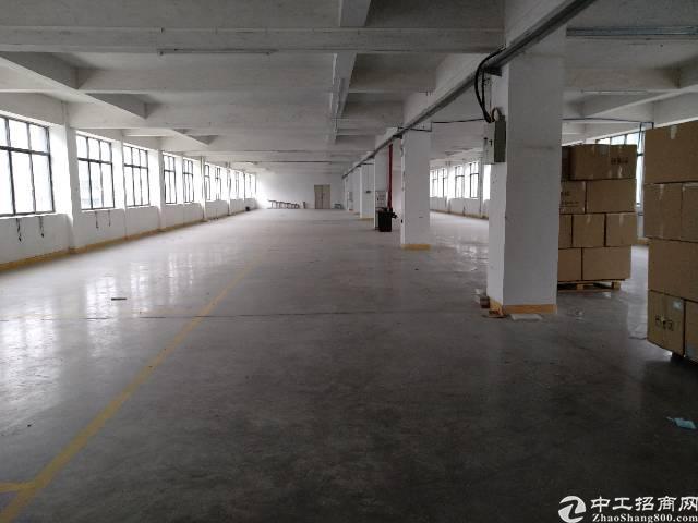 新塘沙埔银沙工业区标准厂房1350平方出租