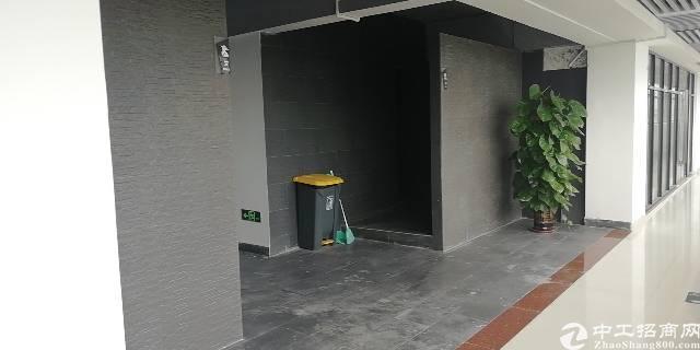 沙井西部原房东精装写字楼