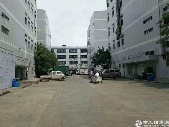 福永塘尾,楼上1500平方带装修厂房不要转让费