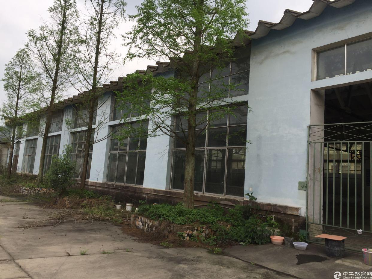 遂宁中胜实业集团20000平厂房任意分割-图2