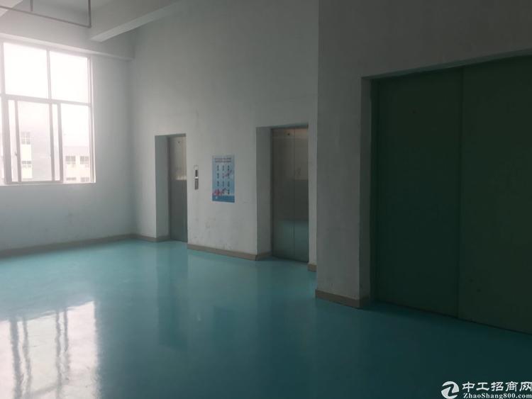 田寮高新产业园新出楼上整层4200平方厂房出租