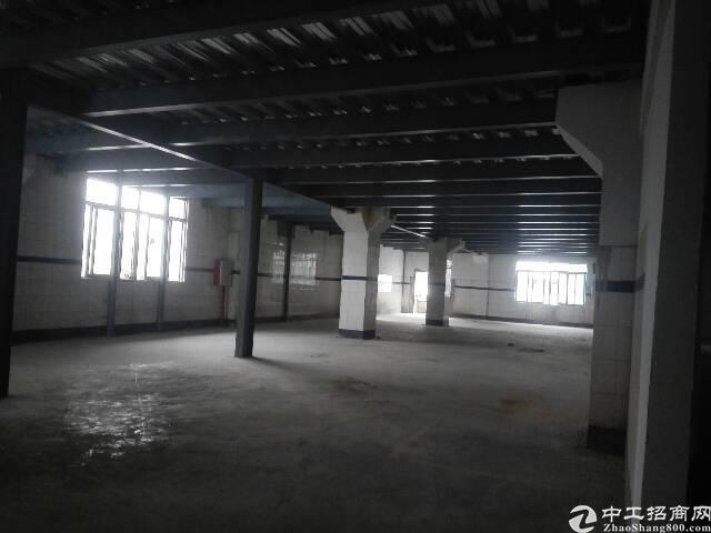 广州市新塘镇原房东独门独院厂房出租