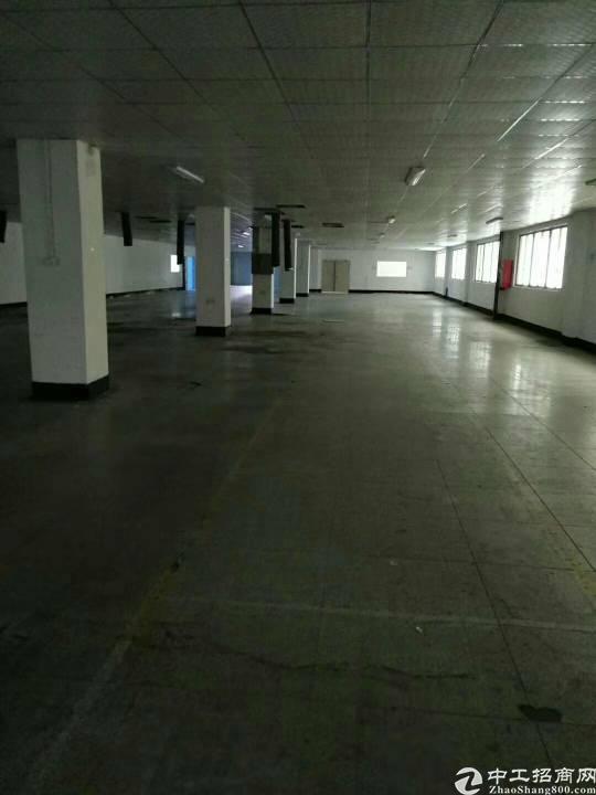 福永重庆路边上,3200平方带精装修厂房-图4