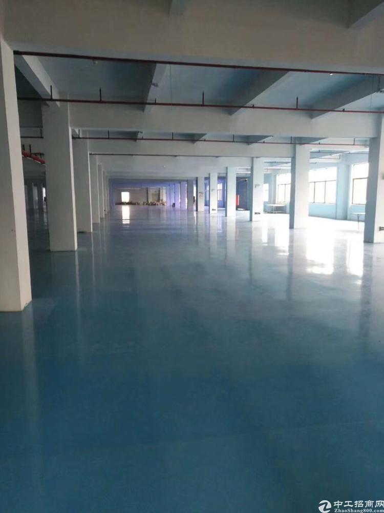 龙华地铁口4500平全新地平漆厂房招租大小分割
