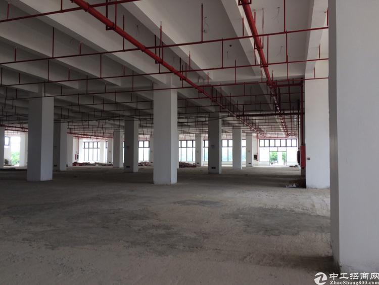 横岗六约新出标准厂房一楼5.5米高5000平米出租