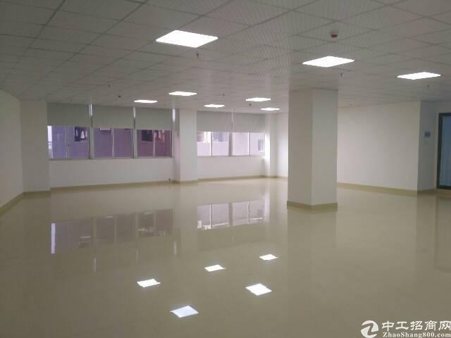 福永沿江高速口2-3000㎡精装修写字楼出租