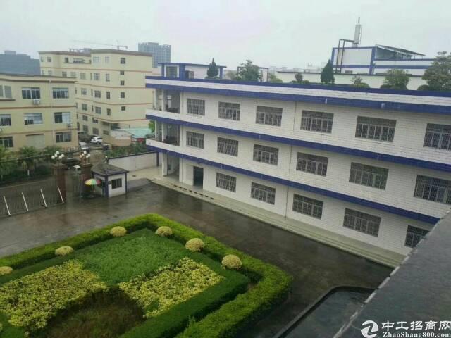 清溪花园式独院厂房总面积21700平方,好招工,交通好