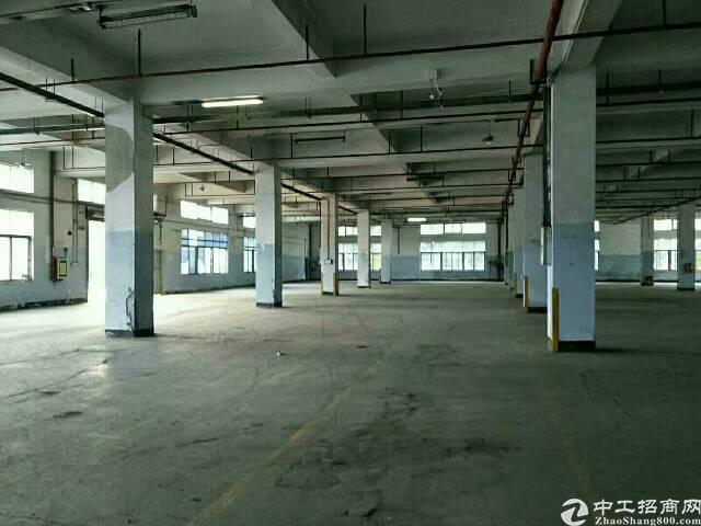 福永地铁口附近楼上整层2000平厂房招租-图4