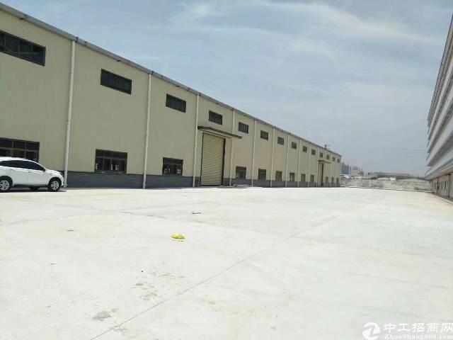 长安镇新出高大上单一层钢构独院厂房