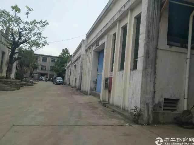 坑梓秀新社区独门独院钢结构4900平方大小分租