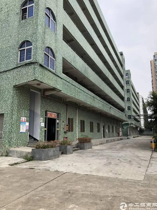 沙井后亭地铁站新出厂房,独门独院带食堂,宿舍