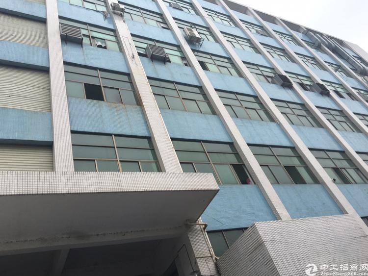 公明南光高速出口楼上700平3吨货梯