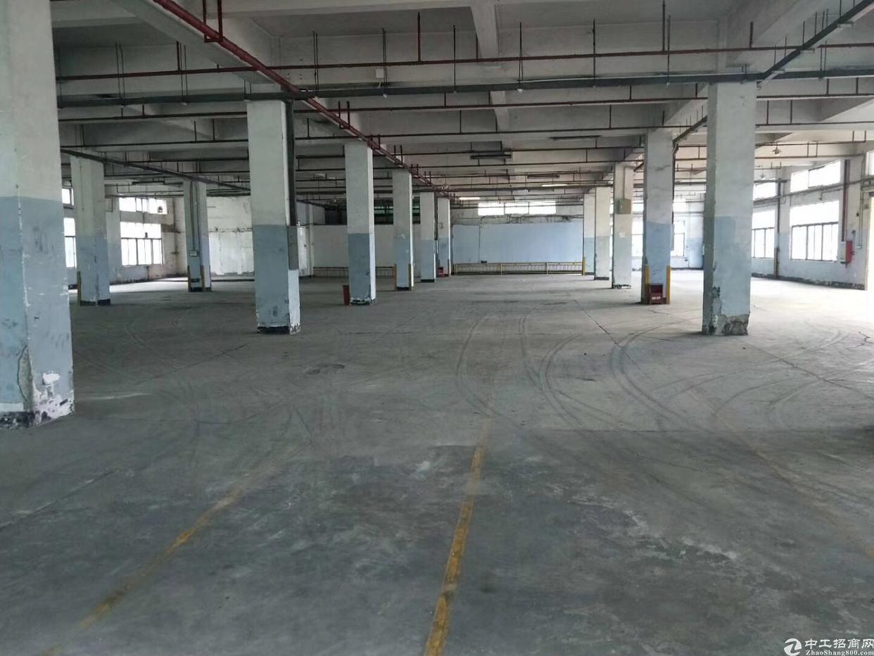 沙井新出独院厂房34600平方,低价出租20元每平可分租