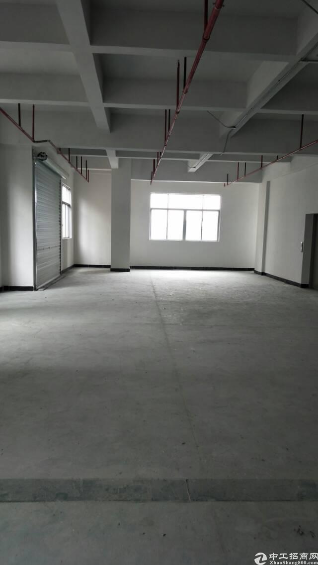 长安镇沙头新一层厂房
