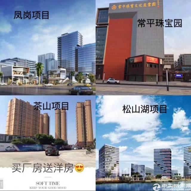 东莞市红本厂房分层出售