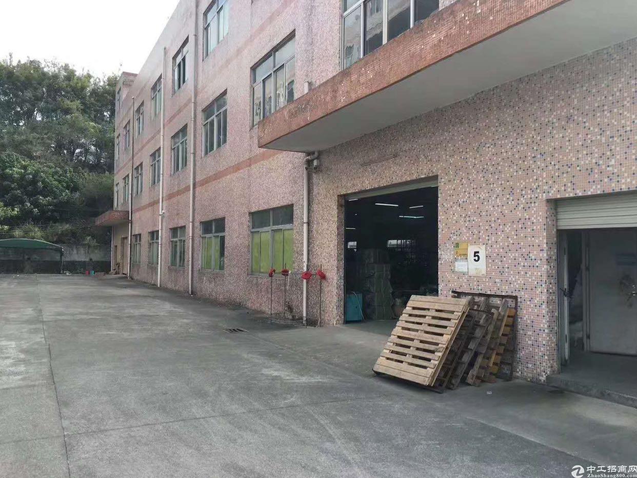 龙岗龙东新出楼上580平 带装修厂房出租