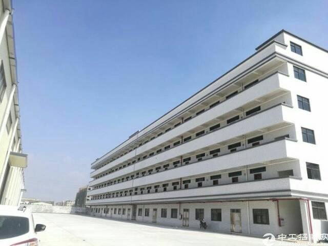 东莞市重工业钢结构厂房六万平米招租,信息真实有效