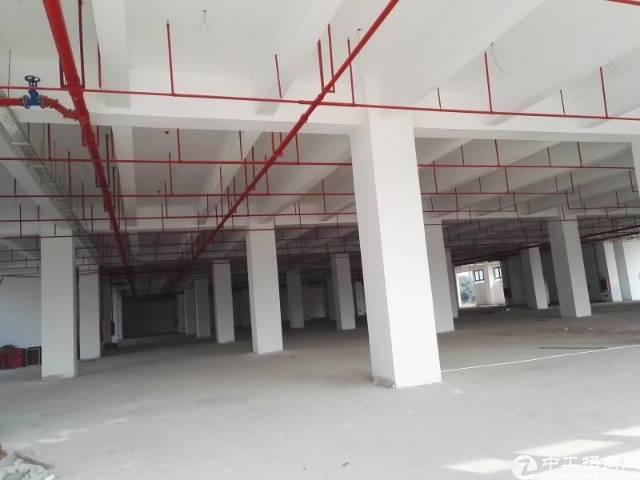 企石镇原房东分租二楼5600平方带消防喷淋,车间4米高,电5