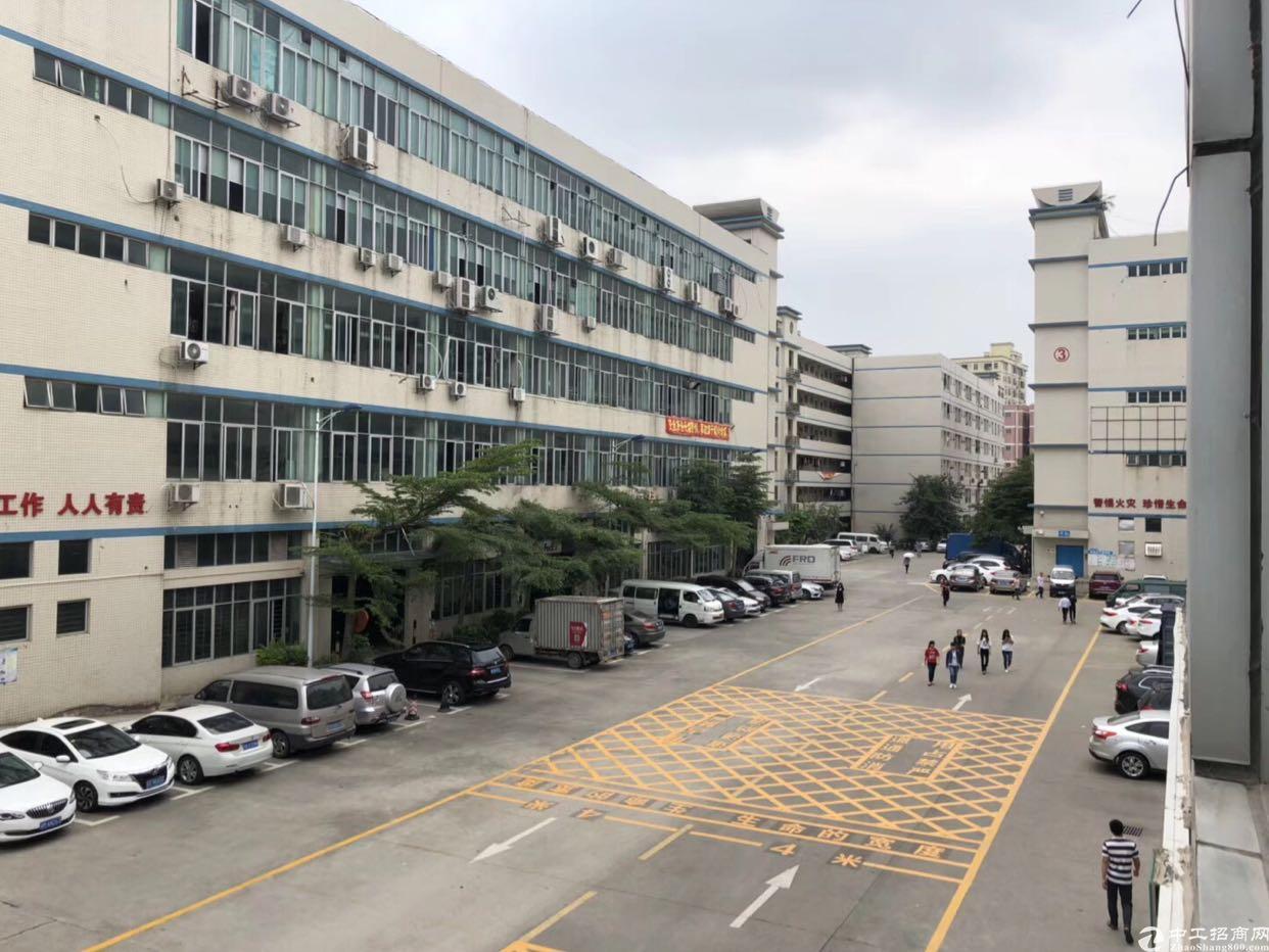 龙华大浪商业中心附近精装修厂房1500平,单层
