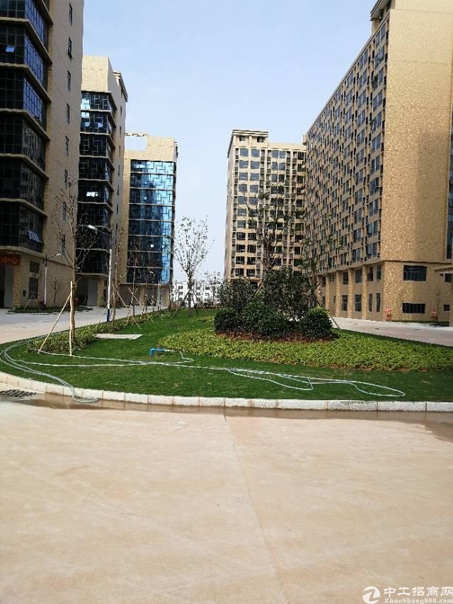 东莞凤岗全新花园式智能制造产业园总面积约十万平方现已开始招租