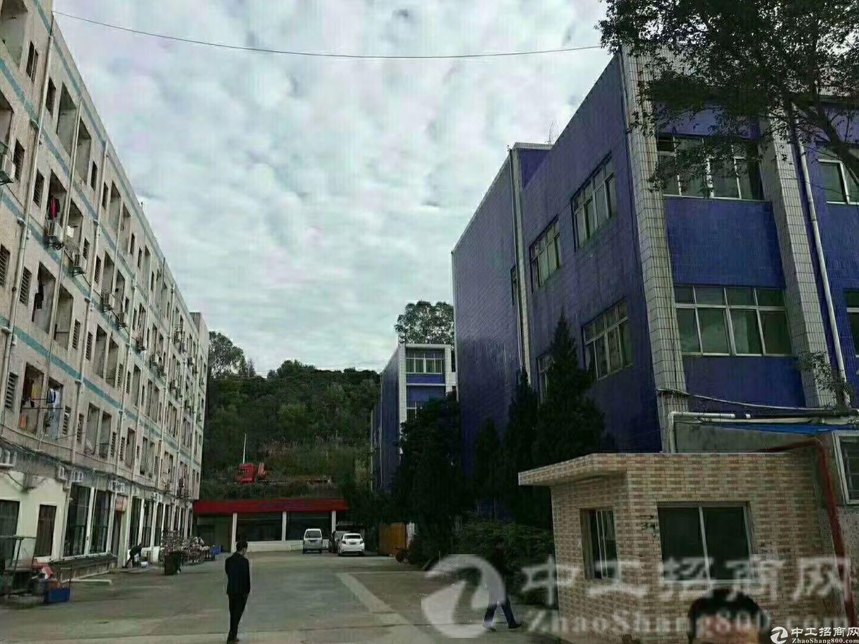 福民路口新出2-3楼,单层1200平米厂房