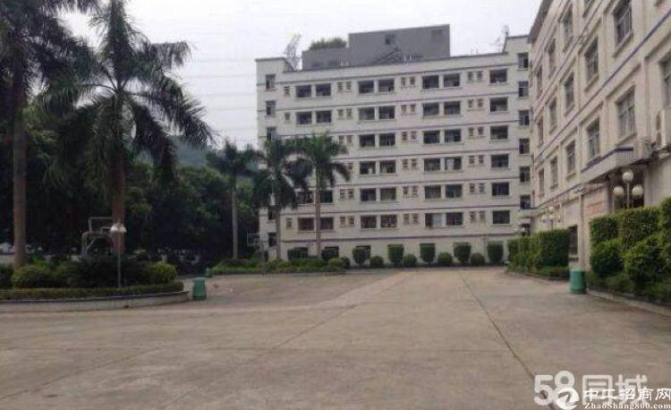 横岗花园式厂房原房东精装修800平米出租可分租。