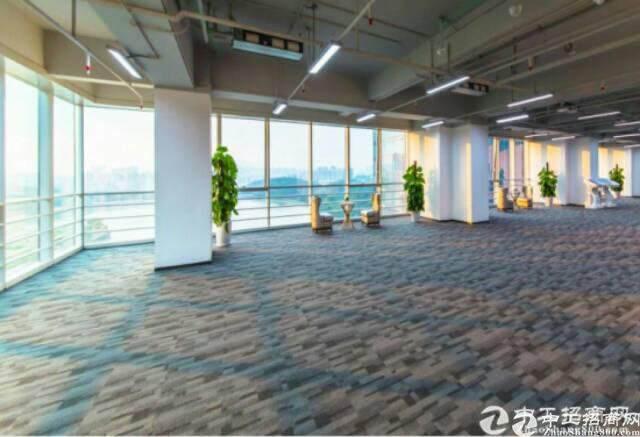 龙岗星河写字楼三期  甲级精品中心商务区招租图片5