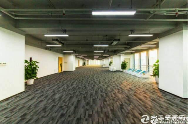 龙岗星河写字楼三期  甲级精品中心商务区招租图片1
