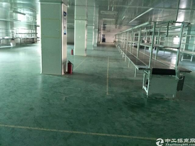 樟木头金河带现成装修厂房1100平方招租